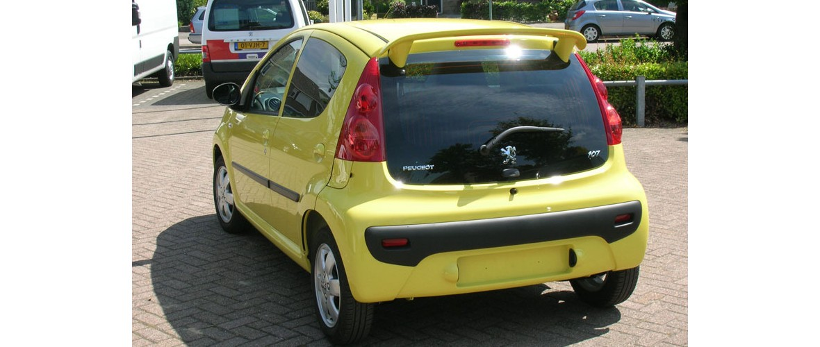 peugeot-10-ramen-blinderen-glascoating-someren.jpg