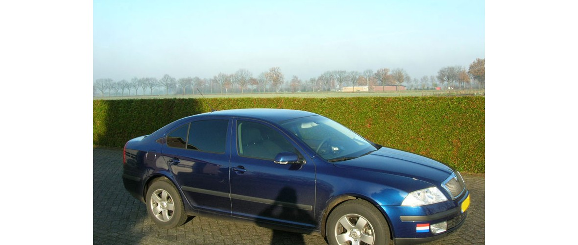 skoda-1-ramen-blinderen-glascoating-someren.jpg